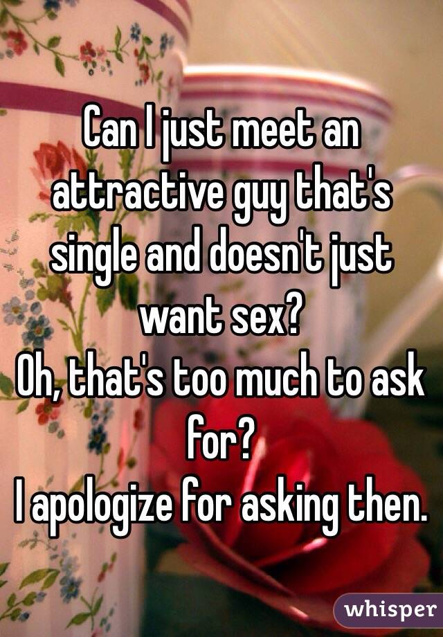 Can I just meet an attractive guy that's single and doesn't just want sex?  Oh, that's too much to ask for? I apologize for asking then.