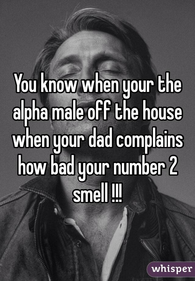 You know when your the alpha male off the house when your dad complains how bad your number 2 smell !!!