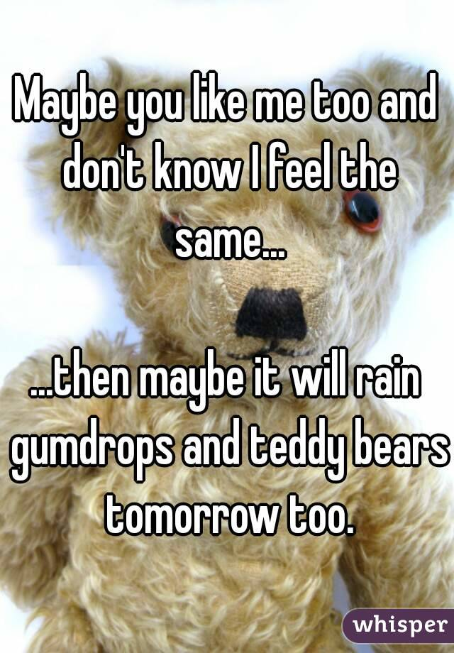 Maybe you like me too and don't know I feel the same...  ...then maybe it will rain gumdrops and teddy bears tomorrow too.