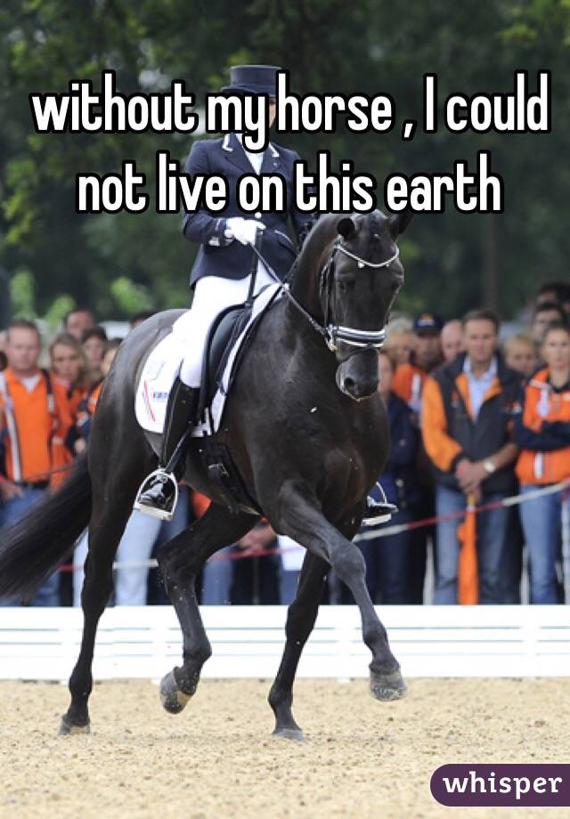 without my horse , I could not live on this earth