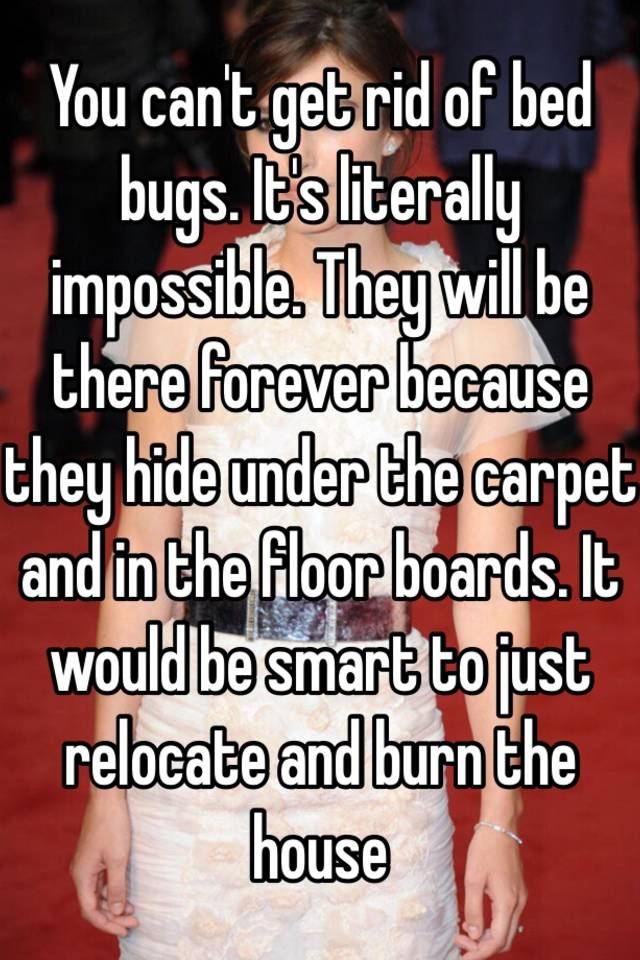 You canu0027t get rid of bed bugs