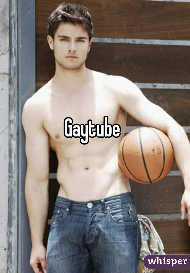 Gay tube net
