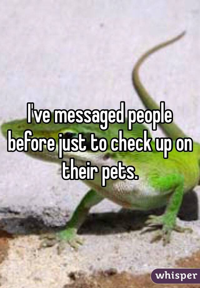 I've messaged people before just to check up on their pets.