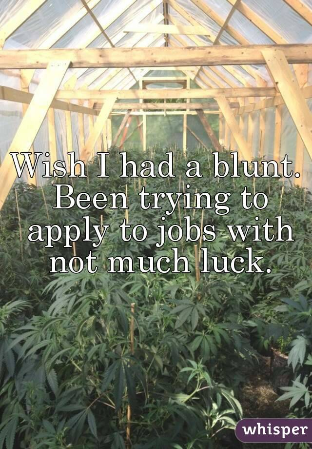 Wish I had a blunt. Been trying to apply to jobs with not much luck.