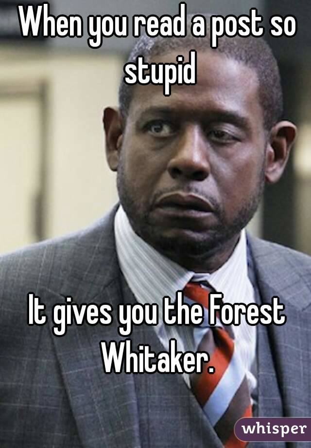 05162d7c9ecbd46743241b1224835e9331afe2 wm?v=3 when you read a post so stupid it gives you the forest whitaker