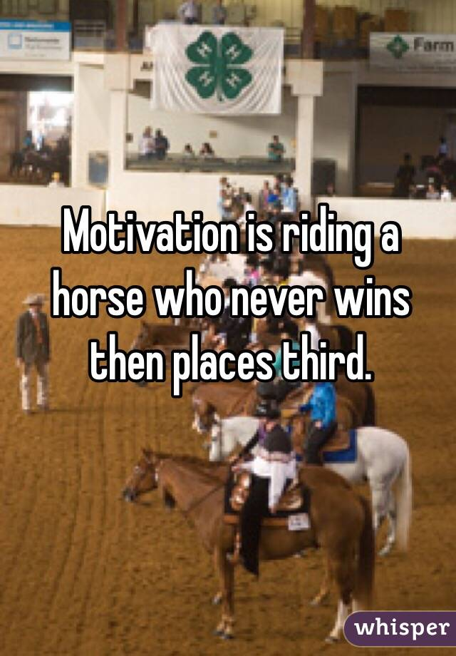 Motivation is riding a horse who never wins then places third.