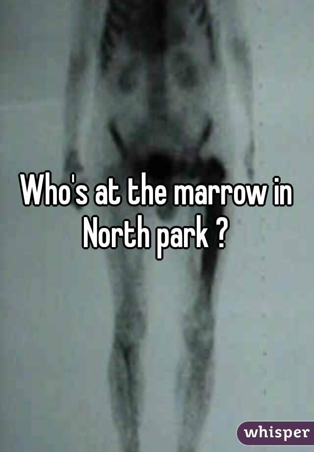Who's at the marrow in North park ?