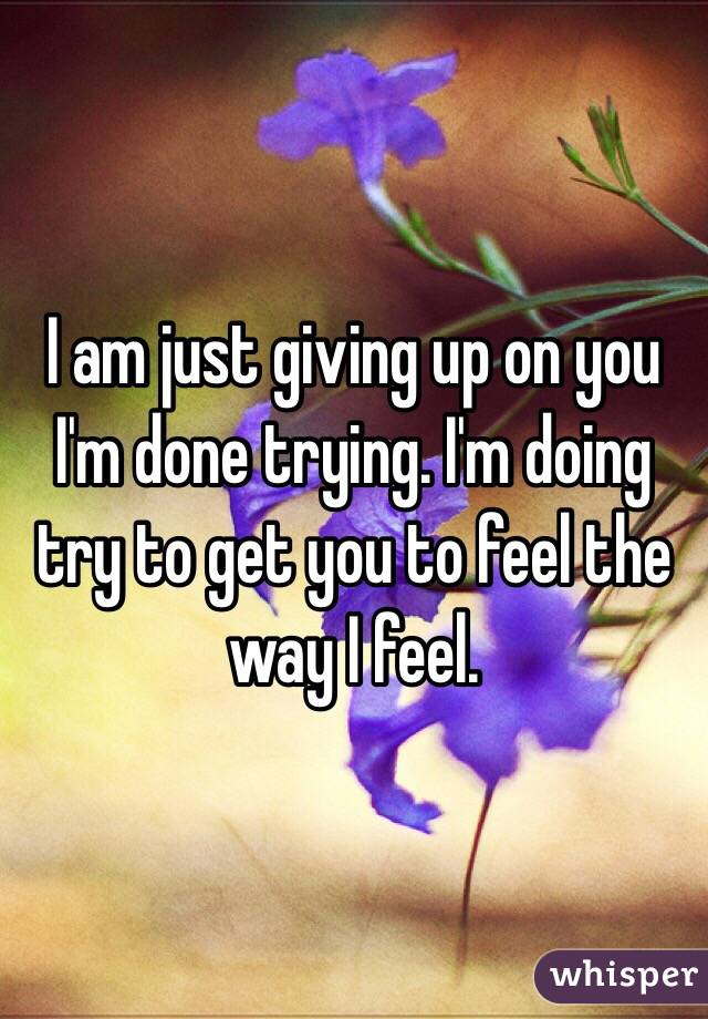 I am just giving up on you I'm done trying. I'm doing try to get you to feel the way I feel.