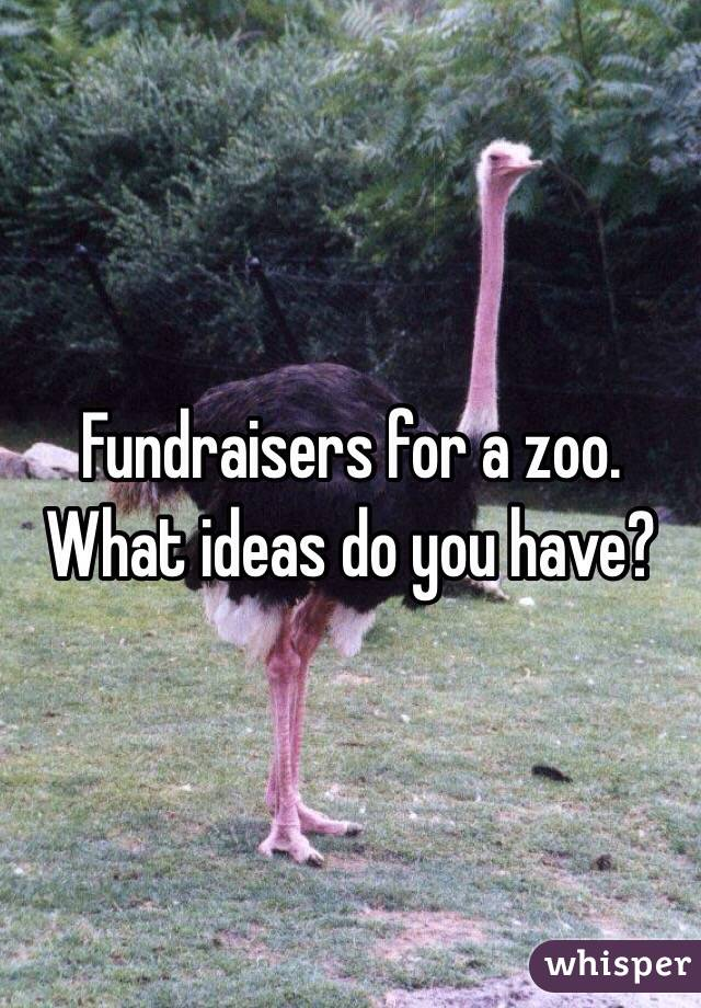 Fundraisers for a zoo.  What ideas do you have?