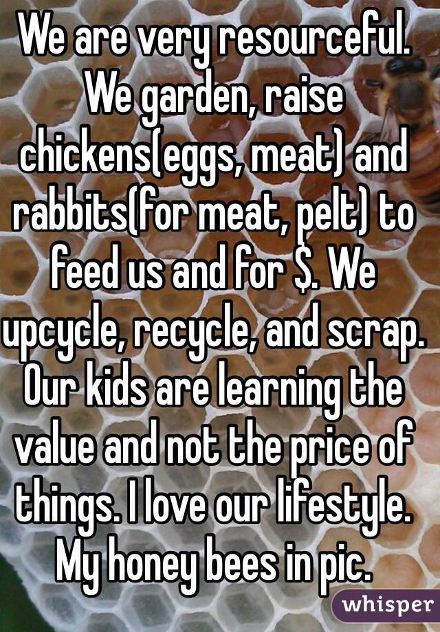 We are very resourceful. We garden, raise chickens(eggs, meat) and rabbits(for meat, pelt) to feed us and for $. We upcycle, recycle, and scrap. Our kids are learning the value and not the price of things. I love our lifestyle. My honey bees in pic.