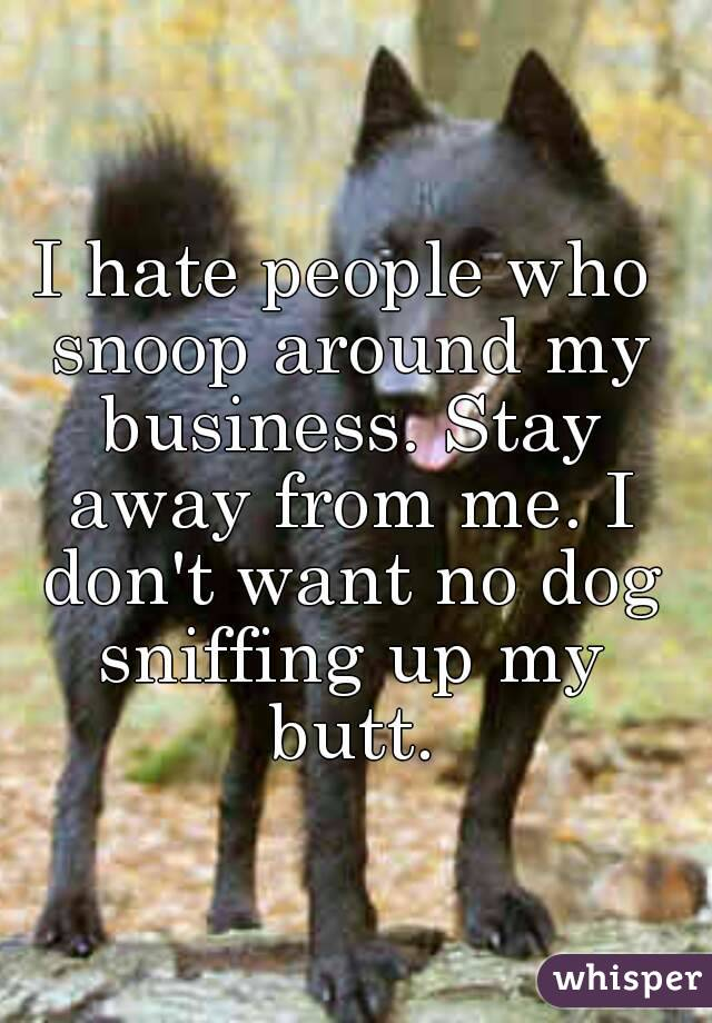 I hate people who snoop around my business. Stay away from me. I don't want no dog sniffing up my butt.