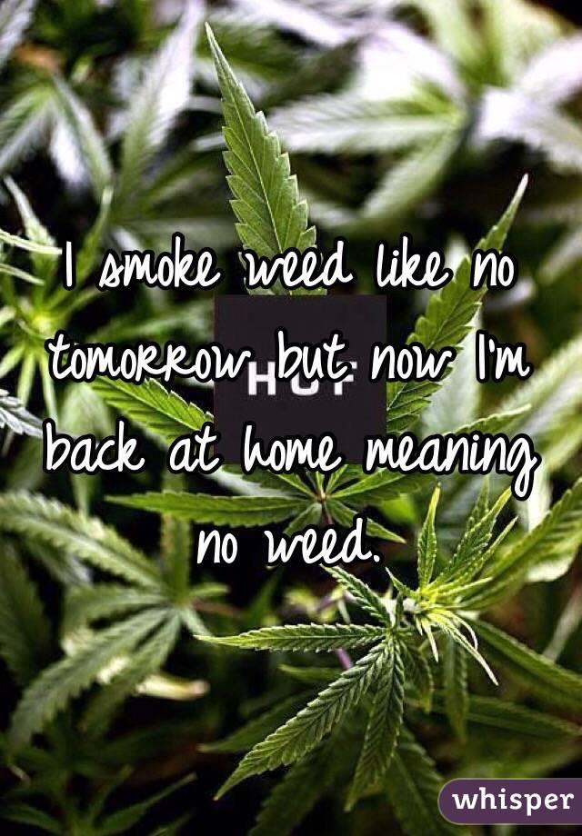 I smoke weed like no tomorrow but now I'm back at home