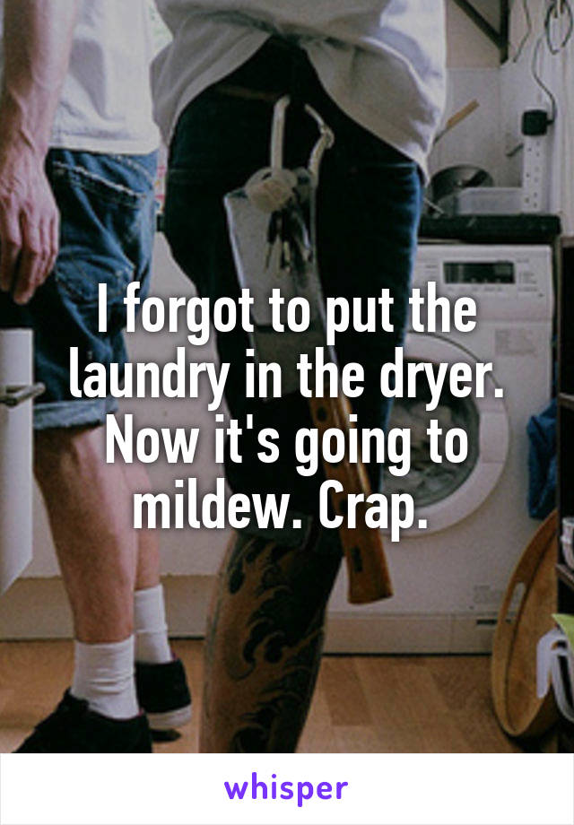 I forgot to put the laundry in the dryer. Now it's going to mildew. Crap.