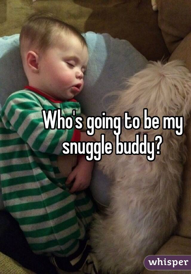 Who's going to be my snuggle buddy?