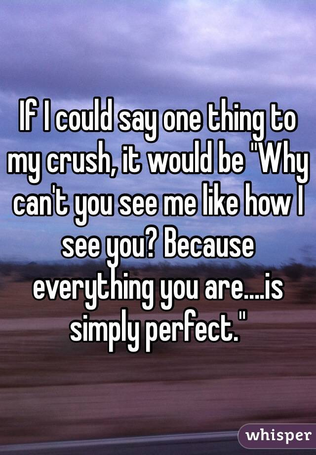 """If I could say one thing to my crush, it would be """"Why can't you see me like how I see you? Because everything you are....is simply perfect."""""""