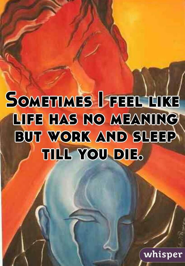 Sometimes I feel like life has no meaning but work and sleep till you die.