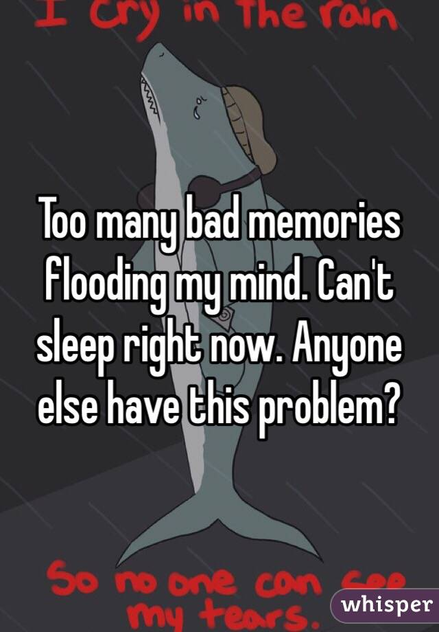 Too many bad memories flooding my mind. Can't sleep right now. Anyone else have this problem?