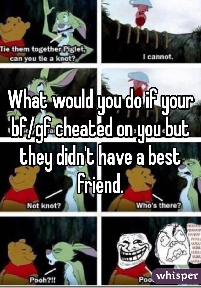 What would you do if your bf/gf cheated on you but they didn't have a best friend.