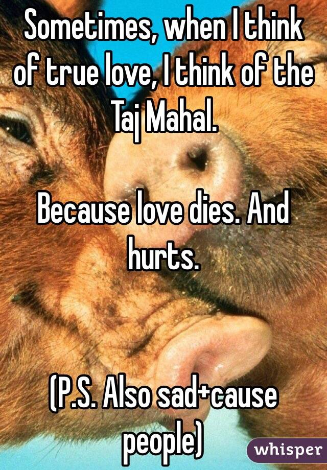 Sometimes, when I think of true love, I think of the Taj Mahal.   Because love dies. And hurts.    (P.S. Also sad+cause people)