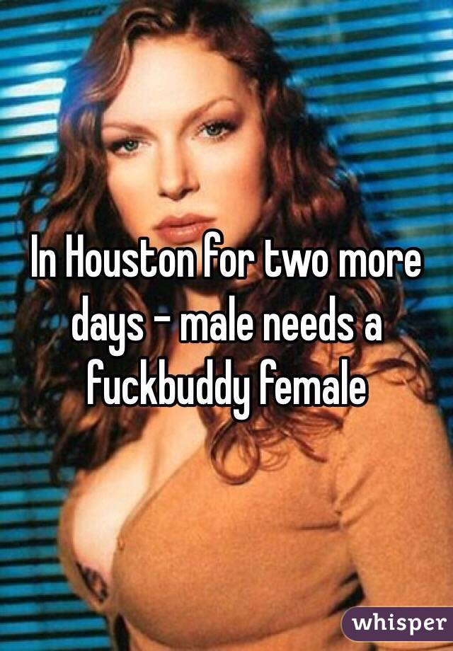 In Houston for two more days - male needs a fuckbuddy female