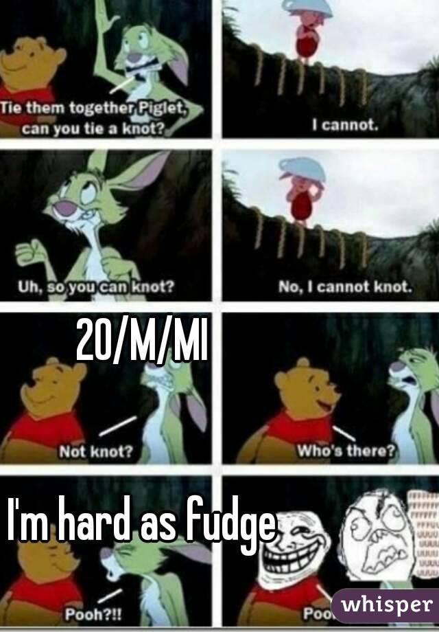 20/M/MI   I'm hard as fudge