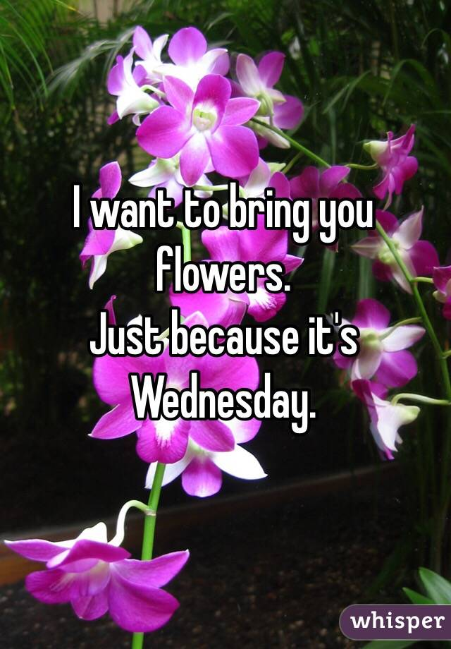 I Want To Bring You Flowers Just Because Its Wednesday