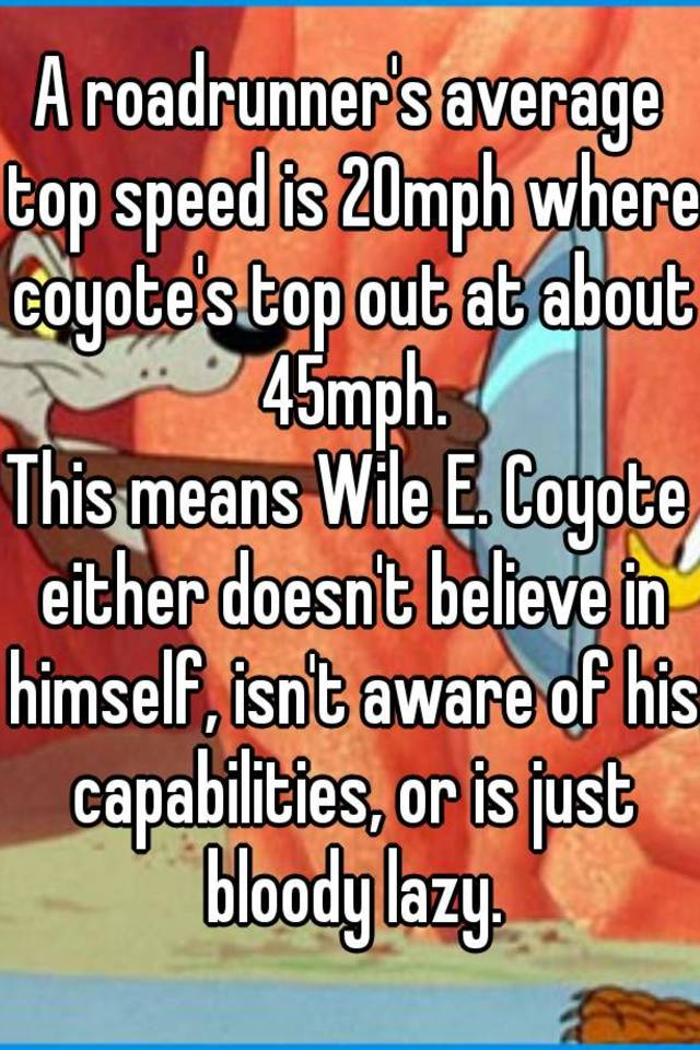 A roadrunner's average top speed is 20mph where coyote's top out at ...
