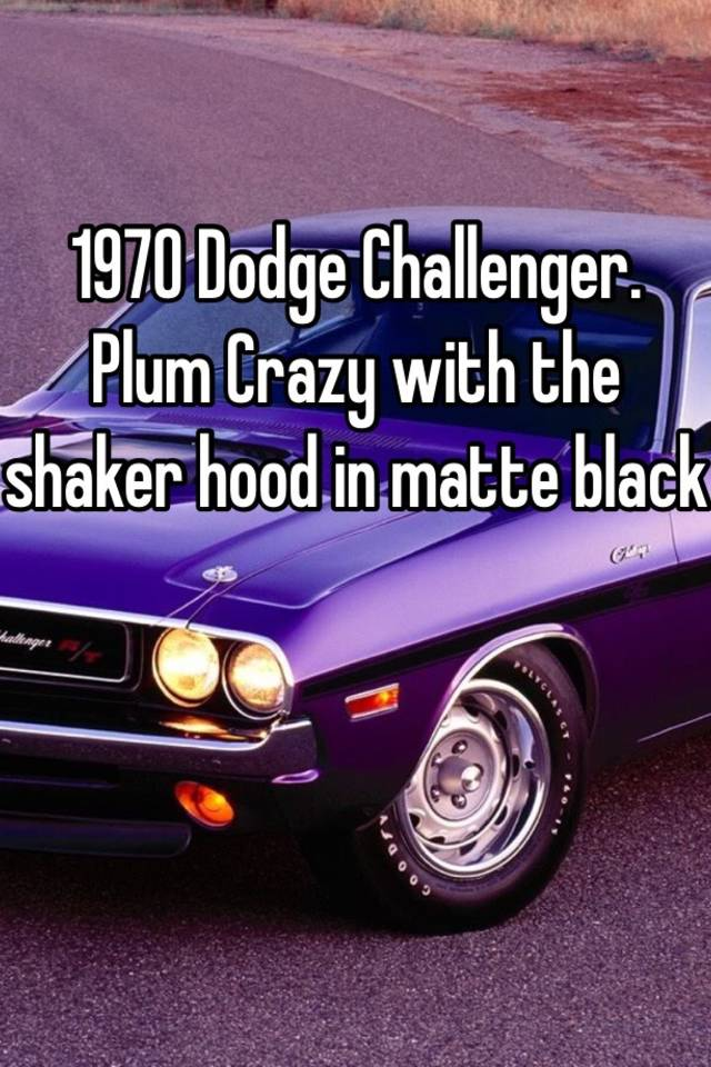 1970 Dodge Challenger Plum Crazy With The Shaker Hood In Matte