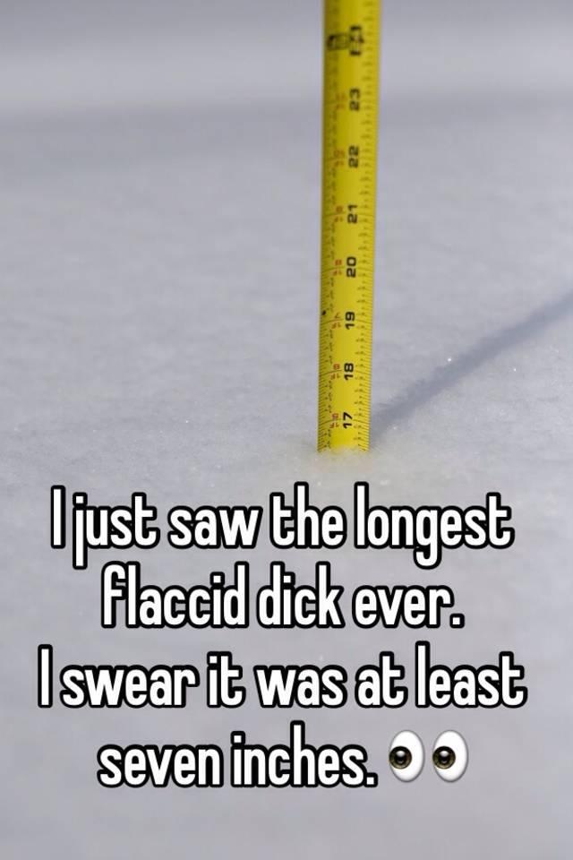 Longest flaccid penis