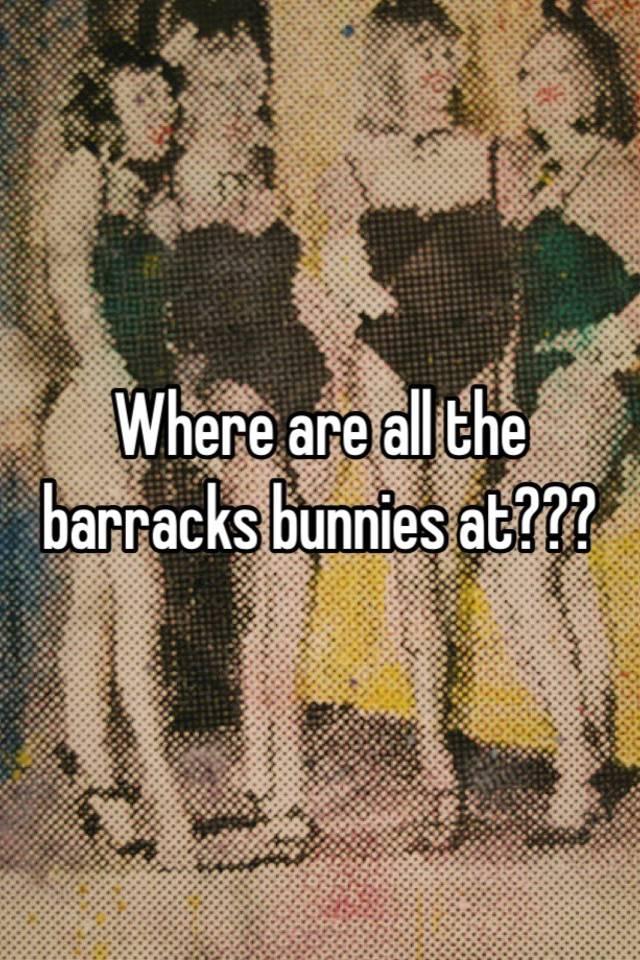 Barracks bunnies