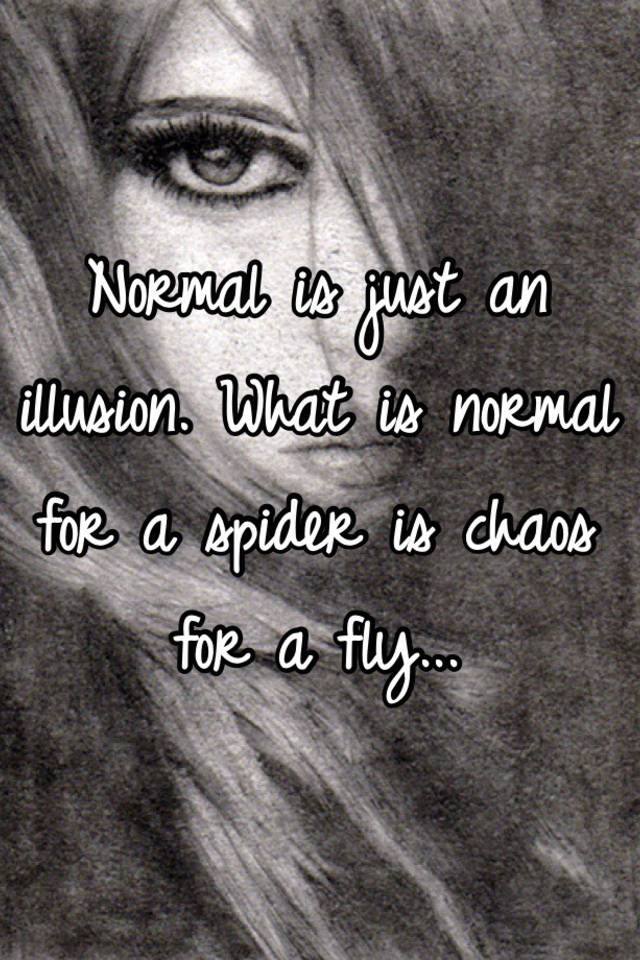 Normal is just an illusion what is normal for a spider is chaos for normal is just an illusion what is normal for a spider is chaos for a fly altavistaventures Choice Image