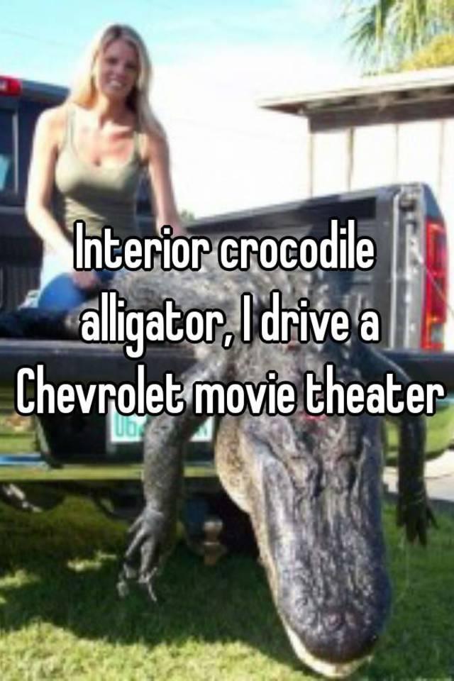 Interior crocodile alligator, I drive a Chevrolet movie theater