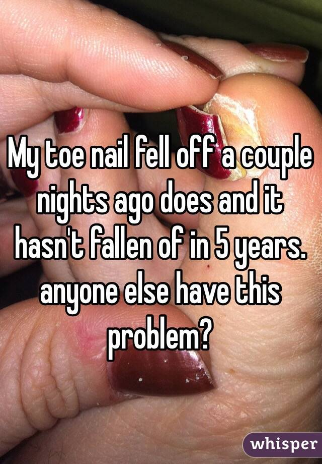 My toe nail fell off a couple nights ago does and it hasn\'t fallen of