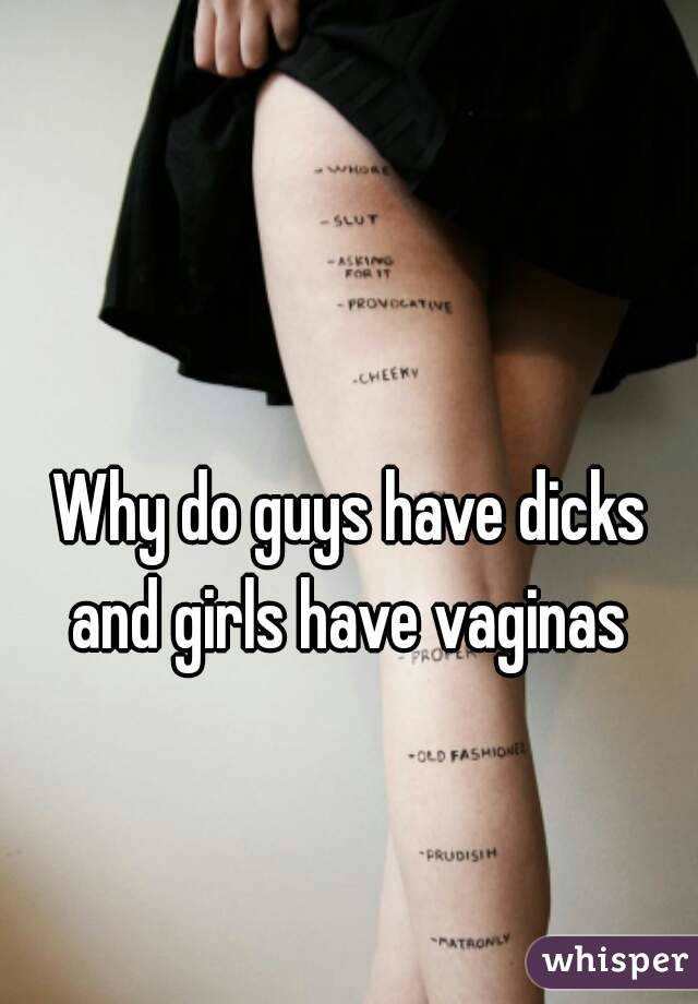 Girls that have vaginas all became