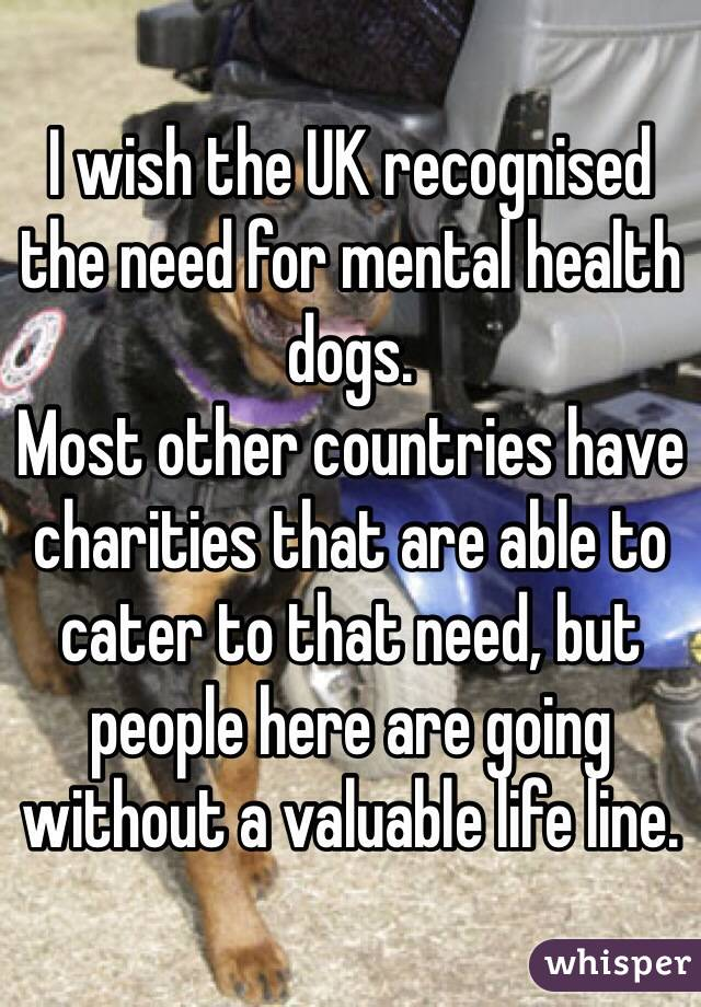 I wish the UK recognised the need for mental health dogs.  Most other countries have charities that are able to cater to that need, but people here are going without a valuable life line.