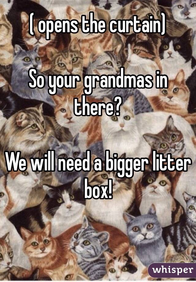 ( opens the curtain)  So your grandmas in there?  We will need a bigger litter box!
