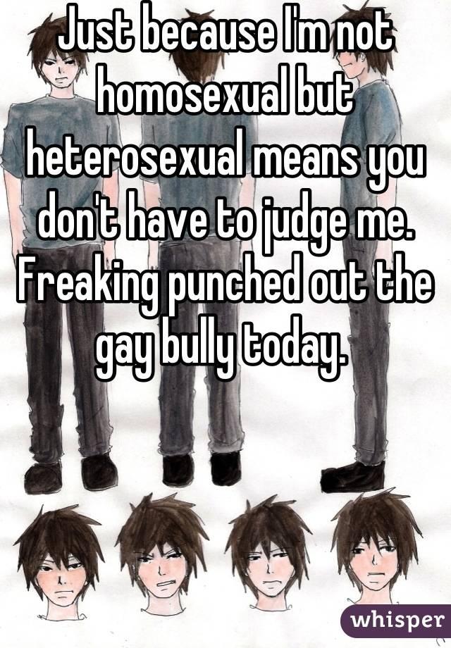 Not gay or heterosexual