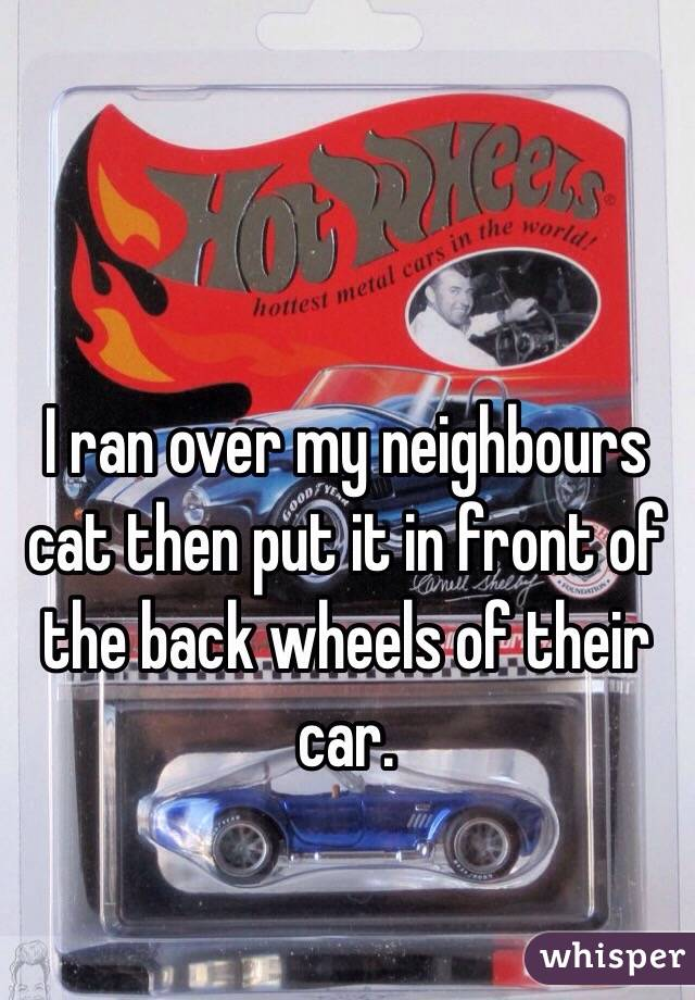 I ran over my neighbours cat then put it in front of the back wheels of their car.