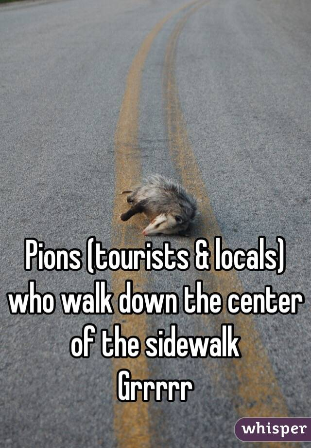 Pions (tourists & locals) who walk down the center of the sidewalk  Grrrrr