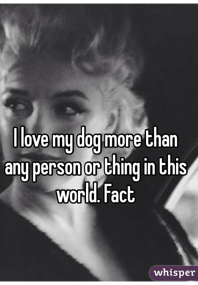 I love my dog more than any person or thing in this world. Fact