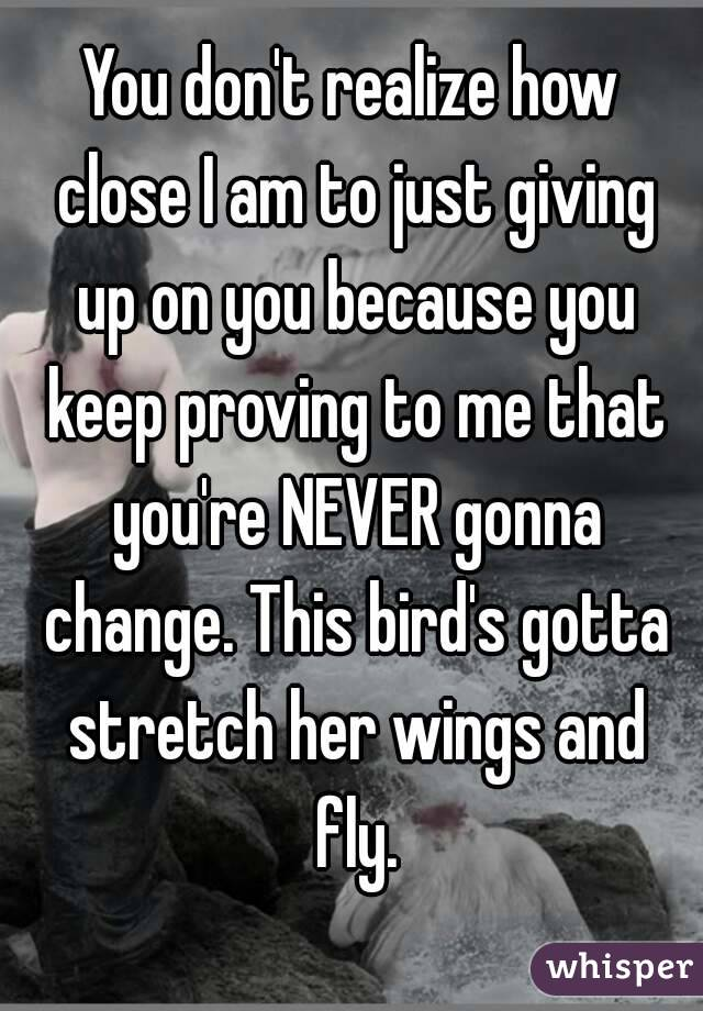 You don't realize how close I am to just giving up on you because you keep proving to me that you're NEVER gonna change. This bird's gotta stretch her wings and fly.