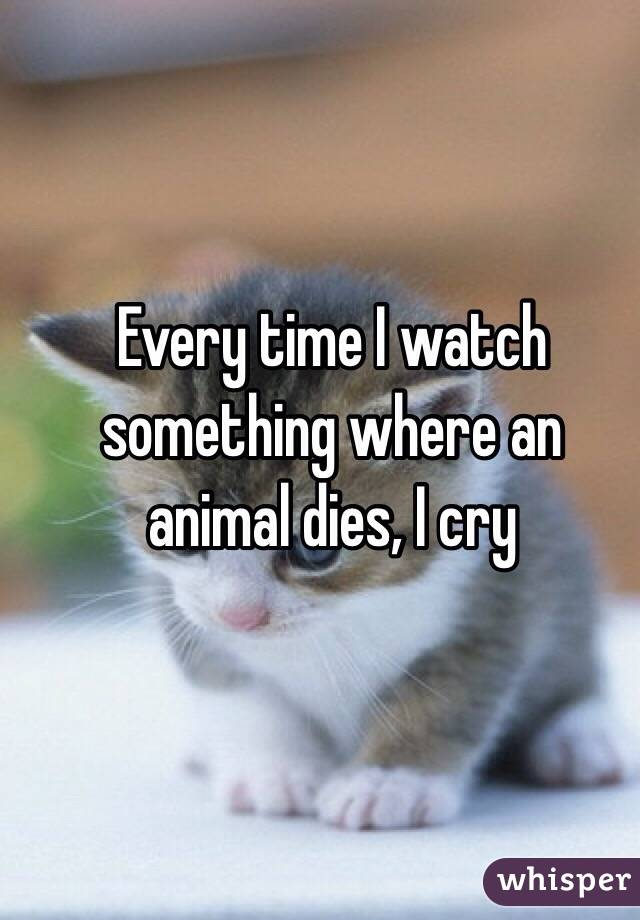 Every time I watch something where an animal dies, I cry
