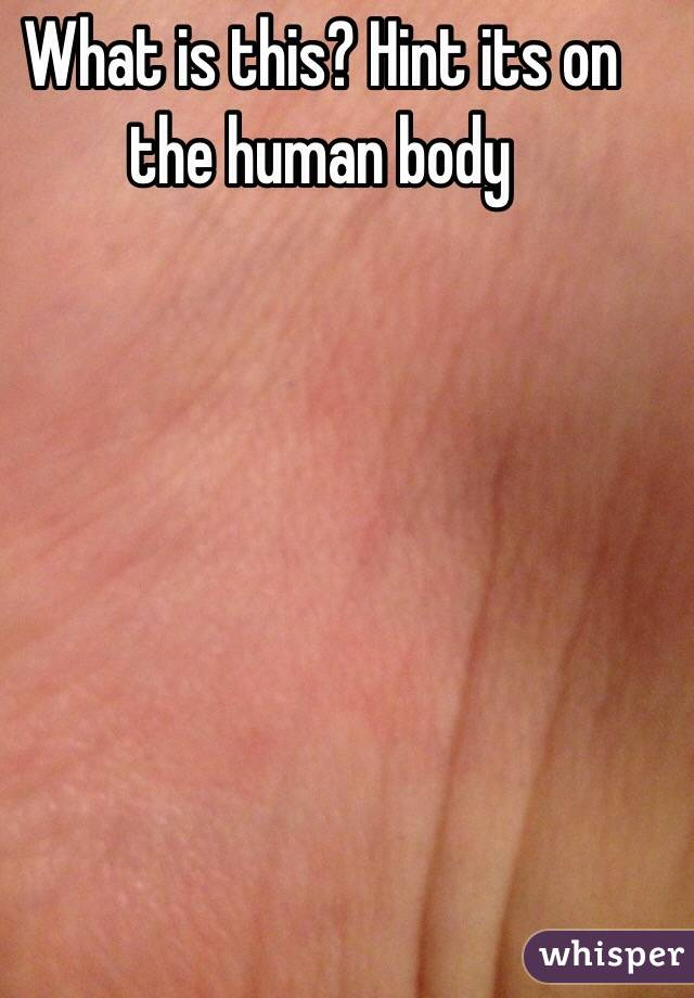 What is this? Hint its on the human body