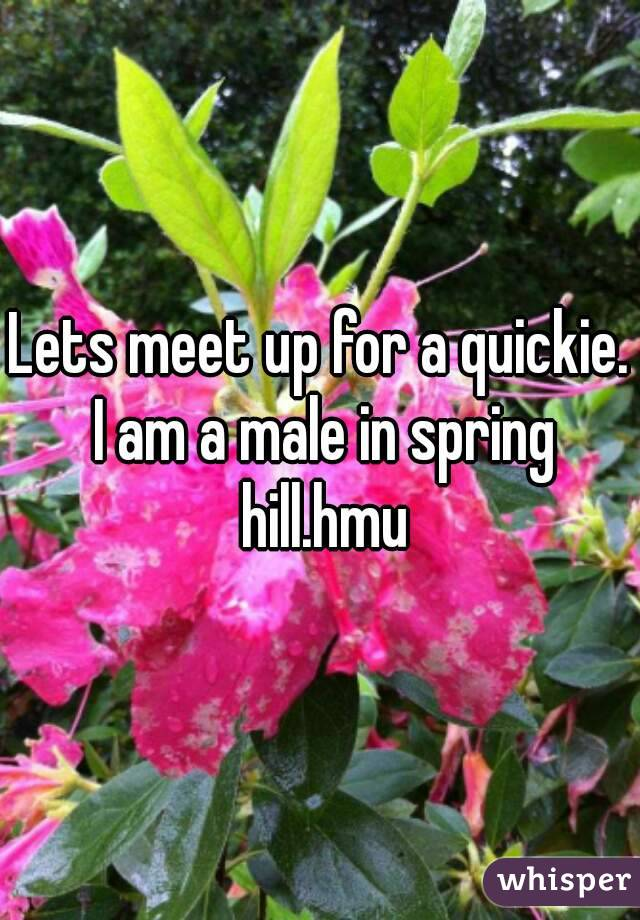 Lets meet up for a quickie. I am a male in spring hill.hmu
