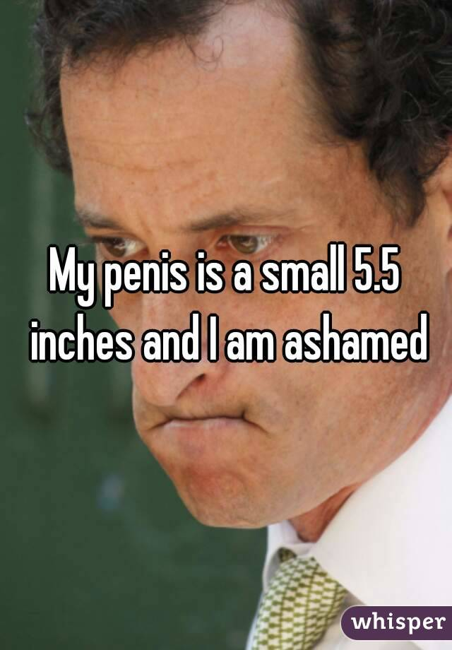 My penis is a small 5.5 inches and I am ashamed