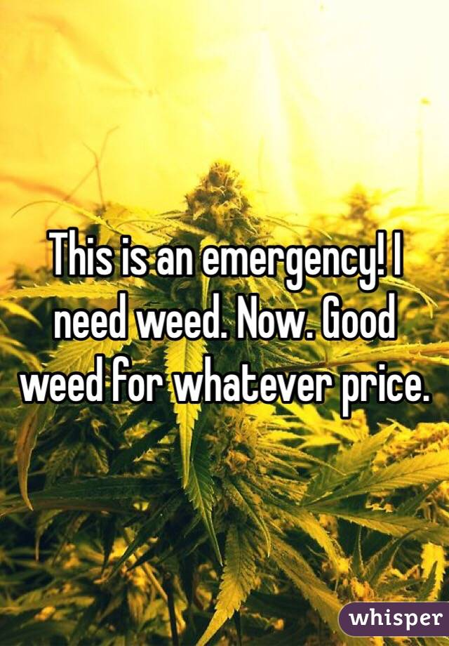 This is an emergency! I need weed. Now. Good weed for whatever price.
