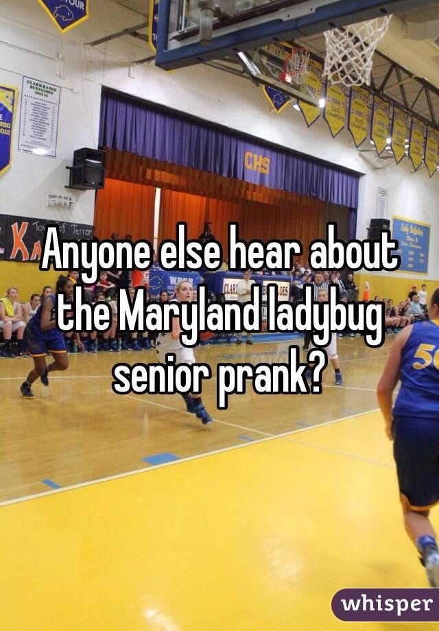 Anyone else hear about the Maryland ladybug senior prank?