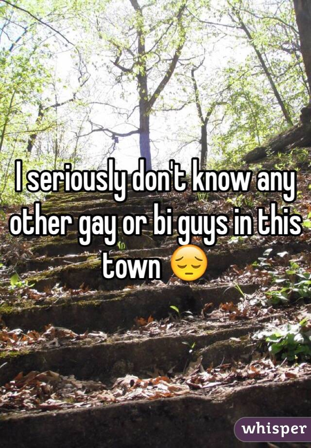 I seriously don't know any other gay or bi guys in this town 😔