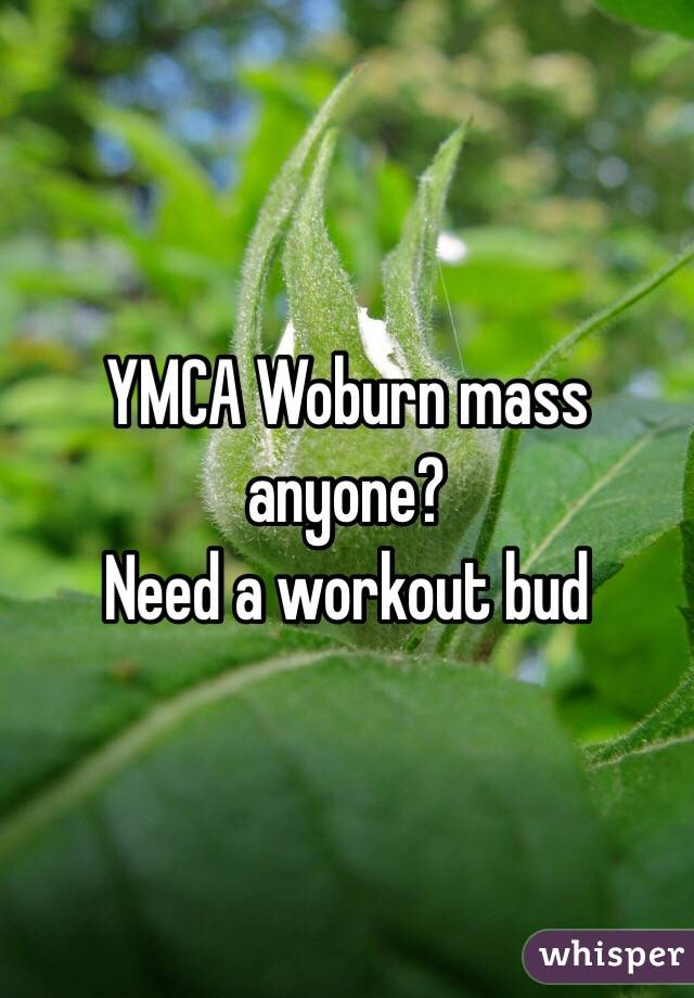 YMCA Woburn mass anyone? Need a workout bud