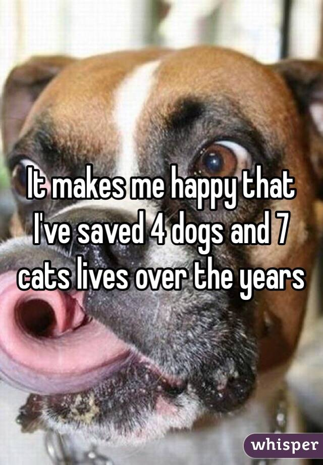 It makes me happy that I've saved 4 dogs and 7 cats lives over the years